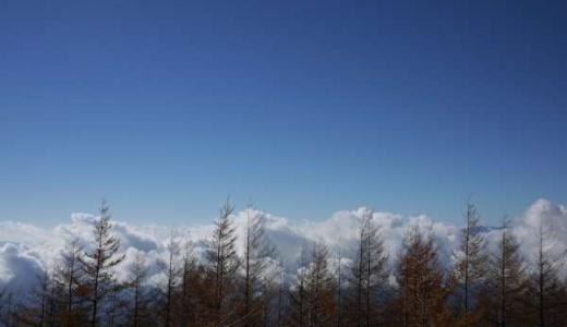 雲の上に行きたい。